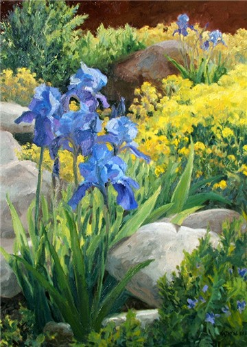 Iris in the Rock Garden - print