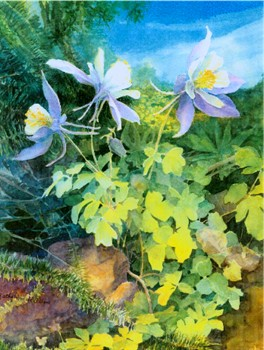 Three Columbines Print