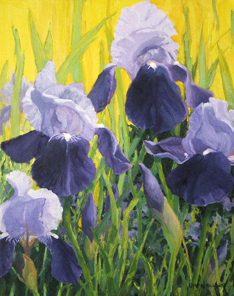 Purple Iris - Print