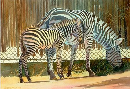 Stripes -Print