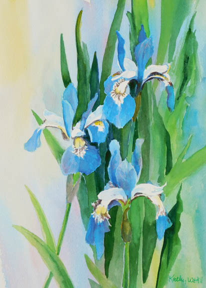 Three Wild Iris